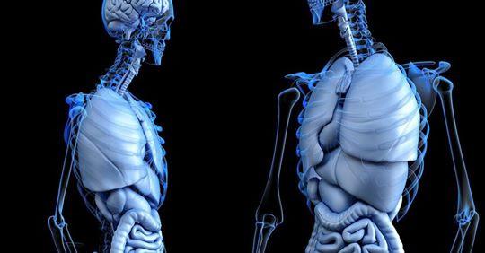 Impresoras 3D para el sector sanitario: avances tecnológicos y respuesta institucional